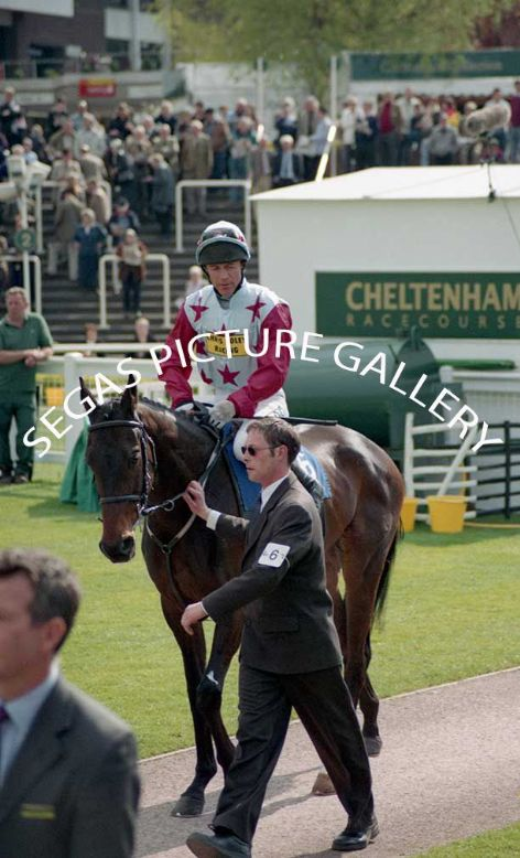 Racehorse Ollie Magern with Jockey Carl Llewellyn